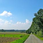 RSV RTF Strecke